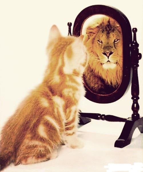 Восемь приемов, чтобы стать уверенным в себе