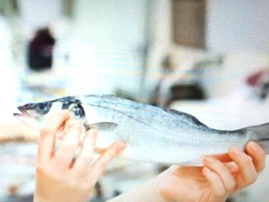 Аллергия на рыбу : причины, симптомы, диагностика, лечение