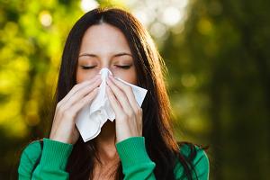 Аллергия на амброзию: симптомы, как лечить, лекарства