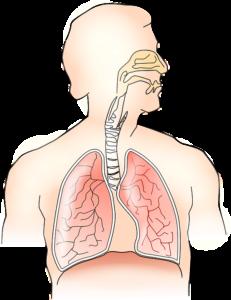 Легочная гипертензия : причины, симптомы, диагностика, лечение