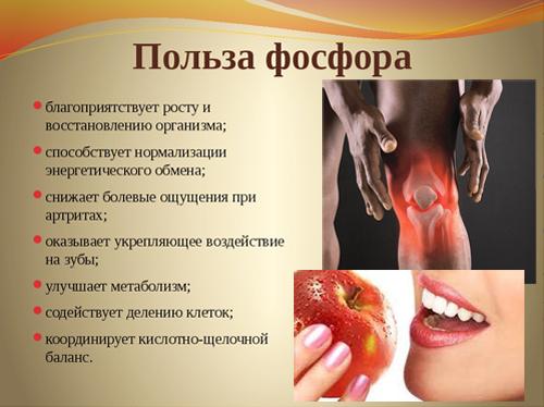 Как фосфор влияет на здоровье человека?