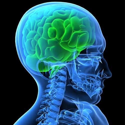 Лимфоцитарный хориоменингит: причины, симптомы, диагностика, лечение
