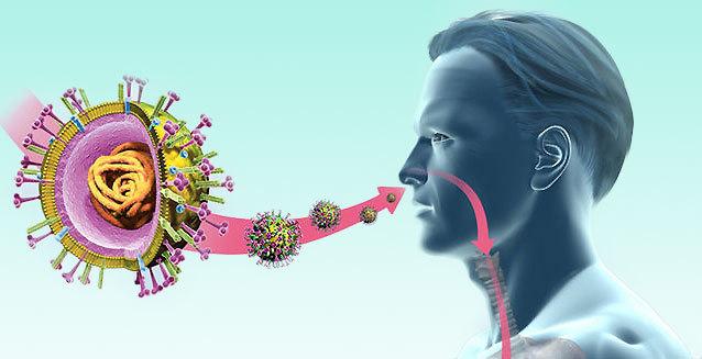 Токсико-аллергические поражения гортани: причины, симптомы, диагностика, лечение