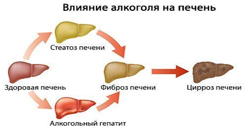 Народные средства для лечения печени